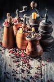 Oude pepermolennen met verschillende types van peper royalty-vrije stock fotografie
