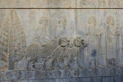 Oude Persepolis Complex in Pari, Iran royalty-vrije stock afbeeldingen