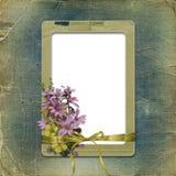 Oude photoalbum met grungeframe en bos Stock Foto