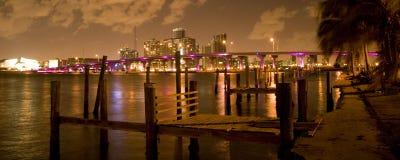 De stad van Miami bij nacht Stock Foto's