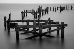 Oude pijler en zeemeeuwen Royalty-vrije Stock Fotografie
