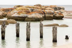 Oude pijler, Lillies-Strand, Flinders-Eiland, Tasmanige stock fotografie