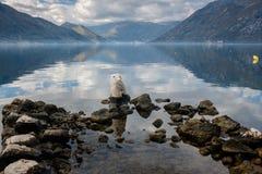 Oude pijlerstenen in het kalme duidelijke water met hemelbezinning Stock Foto's