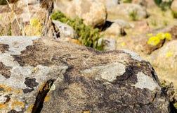 Oude plaats met historische rotstekeningen in Kyrgyzstan stock foto's