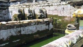 Oude pool van de Balinese tempel Goa Gajah, Olifantshol in Bali, Unesco-erfenis in Indonesië, 4k-lengtevideo stock video