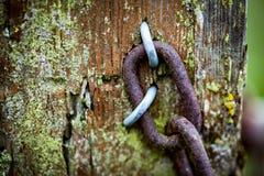Oude poortpost met ketting en prikkeldraad Royalty-vrije Stock Foto's