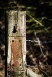 Oude poortpost met prikkeldraad Stock Foto's