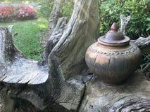 Oude pot van water, unieke pot Stock Afbeeldingen