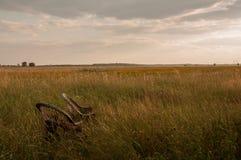 Oude rieten stoelen op het gebied Op de horizon is een bos Royalty-vrije Stock Afbeelding
