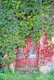 Oude rode deuren stock foto