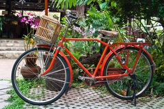 Oude Rode fiets Stock Afbeelding