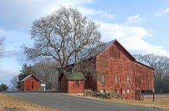 Oude Rode Schuren en Boom bij de Landweg Royalty-vrije Stock Afbeeldingen