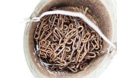 oude roestige emmer en ketting daarin Zo verzamelden zij water van putten De technologieën hielpen om handarbeid niet te gebruike royalty-vrije stock afbeeldingen