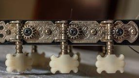 Oude roestige gitaar stemmende pinnen stock afbeelding