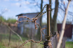 Oude roestige post met prikkeldraad Stock Foto's