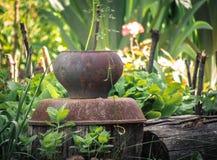 Oude roestige pot in de de zomertuin van plattelandshuisje royalty-vrije stock afbeelding