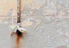 Oude roestige regenpijp op grijze uitstekende muur Stock Afbeelding