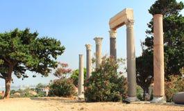 Oude roman kolom-byblos Stock Fotografie