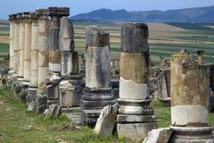 Oude Roman Kolommen, Volubilis, Marokko royalty-vrije stock foto's