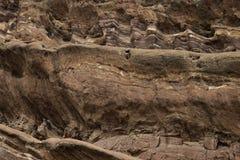 Oude rots en minerale textuur als achtergrond op een muur royalty-vrije stock afbeelding