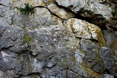 Oude rots met barsten royalty-vrije stock foto