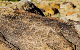 Oude rots snijdende plaats met rotstekeningen in Kyrgyzstan stock afbeeldingen