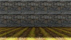 Oude Rotsenmuur met Kleurrijke Grasvloer Royalty-vrije Stock Afbeeldingen