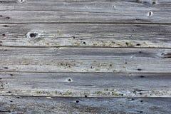 Oude rotte houten textuur Royalty-vrije Stock Fotografie