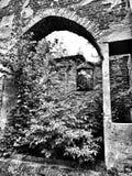 Oude ruïne Artistiek kijk in zwart-wit Stock Afbeeldingen