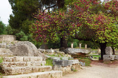 Oude ruïnes in archeologisch museum in Olympia Griekenland royalty-vrije stock foto