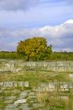 Oude ruïnes in de herfst Royalty-vrije Stock Foto's