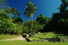 Oude Ruïnes in Noordelijk Colombia Stock Foto