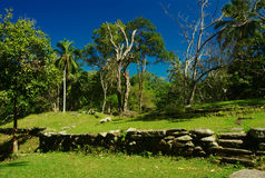 Oude Ruïnes in Noordelijk Colombia Royalty-vrije Stock Foto's