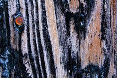 Oude rustieke houten textuurmuur Stock Foto