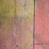 Oude schil rode verf op grungy planken met mos Royalty-vrije Stock Foto's