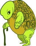 Oude schildpad royalty-vrije illustratie