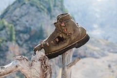 Oude schoen Stock Fotografie