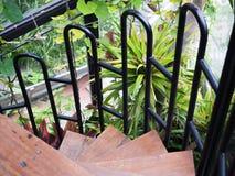 Oude spiraalvormige treden, oude houten treden Stock Foto