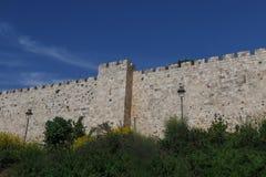 Oude Stad van Jeruzalem, Israël royalty-vrije stock foto's