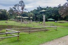Oude standbeelden in archeologisch park in San Agustin stock foto's