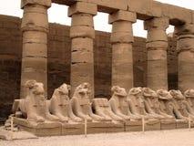Oude standbeelden in Egypte Stock Afbeeldingen