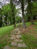Oude stappen in het groene park stock afbeeldingen