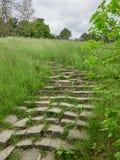 Oude stappen in het groene park stock foto's