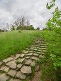 Oude stappen in het groene park stock fotografie