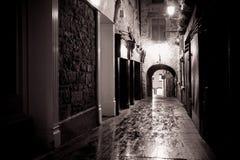 Oude Steeg Kilkenny Ierland Stock Afbeelding