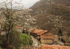 Oude steen landelijke huizen in de lente in een kleine stad in Asturias, Spanje royalty-vrije stock fotografie
