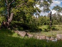 Oude Steenbrug over Rivier Stock Afbeelding
