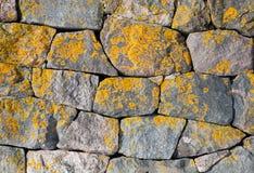 Oude steenmuur met helder korstmos stock afbeelding