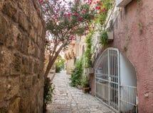 Oude steenstraat in Oude Jaffa, Israël stock afbeelding