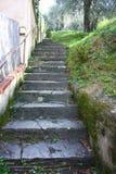 Oude steile trap bergopwaarts in rots, lange eindeloos weg die langs de tuinen loopt royalty-vrije stock foto's